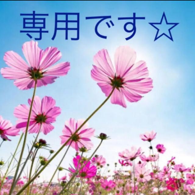 専用です☆ コスメ/美容のヘアケア/スタイリング(シャンプー)の商品写真