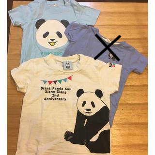サマンサモスモス(SM2)のTシャツ 上野動物園 パンダ 90 95 100(Tシャツ/カットソー)