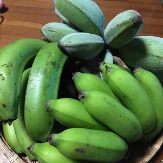 自然栽培  バナナ食べ比べセット(フルーツ)
