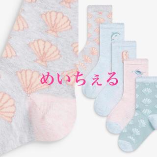NEXT - 【新品】next マルチ シーライフソックス5足組(ガールズ)