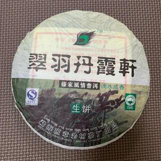翠羽丹露軒 生茶 2008年 普洱茶 プーアル茶 中国茶(茶)