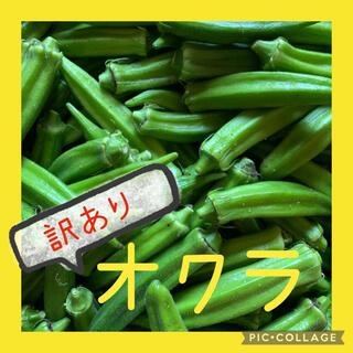 オクラ 訳あり 40本(野菜)