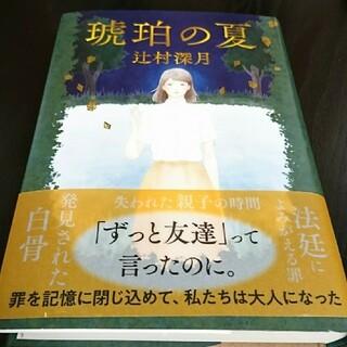 琥珀の夏(文学/小説)