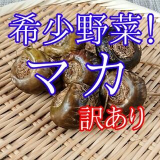 【訳あり】生マカ 100g【滋養強壮!】(野菜)