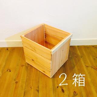 りんご箱 巾1/2  2箱 //  ウッドボックス 木箱 収納 diy 木製