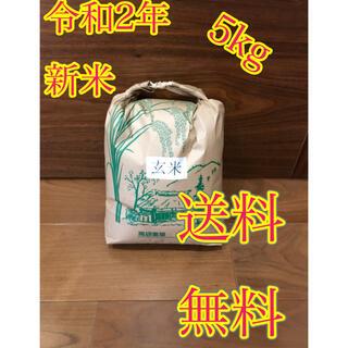 令和2年度産 新米 玄米ヒノヒカリ5kg