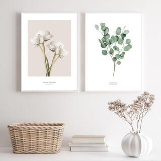 ちょぴこ様 アート ポスター A4 韓国インテリア 植物 木 北欧 葉 ユーカリ(フォトフレーム)