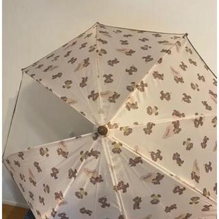 フタフタ(futafuta)のバースデイ フタくま 傘 40㎝(傘)