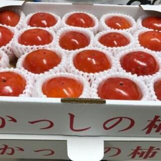 参考画像 釜石市 甲子柿(フルーツ)