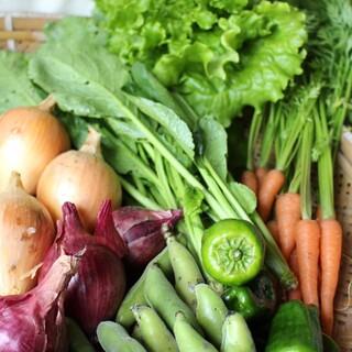 岩手県 遠野市産 野菜詰合せ(野菜)