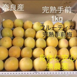 奈良産 身体に安心無農薬 完熟手前梅1kg 箱含(フルーツ)