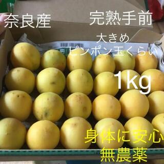 奈良産 無農薬 特大完熟手前梅1kg箱含み フルーティ梅(フルーツ)