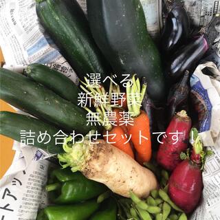 新鮮野菜無農薬詰め合わせセット!(野菜)