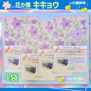 ヤマダヨウホウジョウ(山田養蜂場)の🔸花の種 キキョウ 4袋・送料無料(その他)