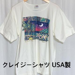 クレイジーシャツ プリント半袖Tシャツ USA製 c-516g(Tシャツ/カットソー(半袖/袖なし))
