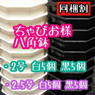 ちゃぴお様 八角鉢(その他)