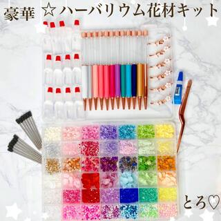 豪華 ハーバリウムボールペン 花材キット たっぷりお花ビーズ 42種 12色(その他)