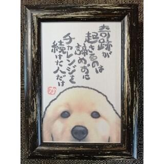 名言絵手紙【No.72】ゴールデンレトリバー(アート/写真)