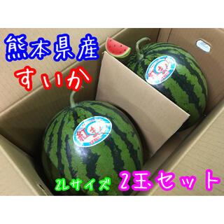 熊本県産 大玉すいか 2Lサイズ2玉セット(フルーツ)