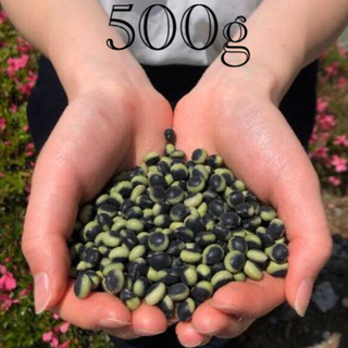500g【安心のJA検査合格品】令和2年信州産 鞍掛豆(くらかけまめ)