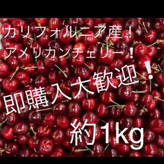 カリフォルニア産 アメリカンチェリー 約1kg (フルーツ)