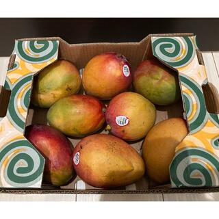 コストコ(コストコ)のコストコ★マンゴー★大玉★8玉★アップルマンゴー(フルーツ)