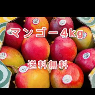 コストコ(コストコ)のコストコ 大人気 マンゴー4kg送料無料(フルーツ)