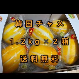 最終値下げ、コストコ 大人気韓国チャメ2箱 送料無料