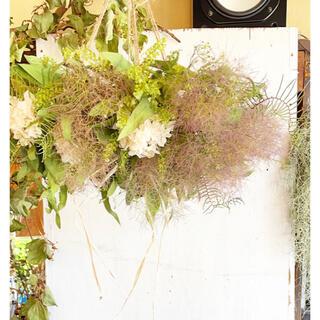 〜天空の植物園〜スモークツリーとあじさいのフライングリース(リース)