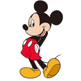 ディズニー(Disney)の専用(外出用品)
