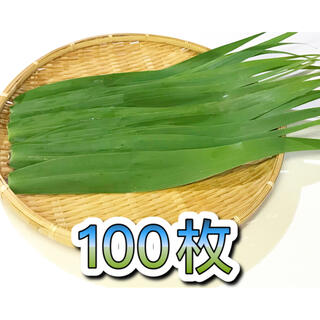 【無添加】粽の葉 ちまき 葦の葉 ちまき用 100枚  粽子叶