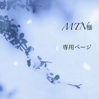 MTN様 専用ページ(その他)