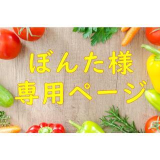 ★ぼんた様専用ページ 摘果きゅうり(ミニきゅうり) 5K 熊本県産 送料込み(野菜)