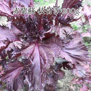 赤じそ 枝付き 無農薬 200g  紫蘇ジュース 梅干し 用(野菜)