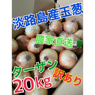 【淡路島産玉葱】品種 ターザン 20kg 訳あり品(野菜)