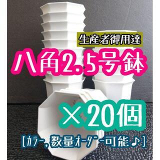 ◎20個◎ホワイト 八角鉢 2.5号 2.5寸 シャトル鉢 (プランター)