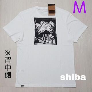 THE NORTH FACE - ノースフェイス tシャツ Stroke Mountain t-shirt 海外M