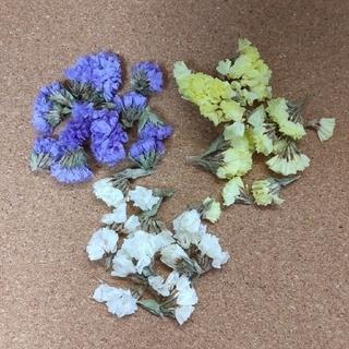 スターチス と紫陽花(少量)ドライフラワー(ドライフラワー)