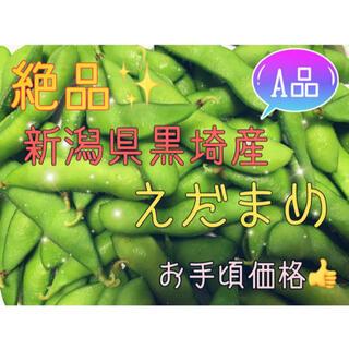 【今年も始まりました!!】新潟県 黒埼産 えだまめ 2kg  A品 (野菜)