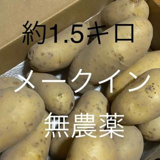 無農薬 じゃがいも 1.5キロ(野菜)
