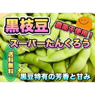 【特別限定セール】 採れたて新鮮! 甘みがあって美味しい黒枝豆 無農薬 野菜