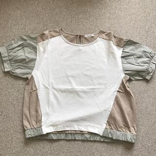 プードゥドゥ(POU DOU DOU)のPOU DOU DOU 三色異素材カットソー(カットソー(半袖/袖なし))