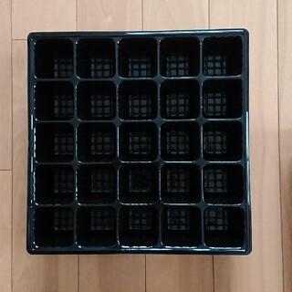 セルトレー 育苗ポット 25穴2枚(その他)