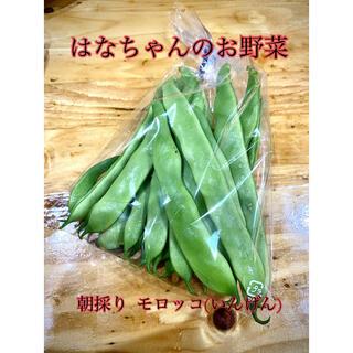 はなちゃんの無農薬野菜 モロッコ(いんげん豆)150g