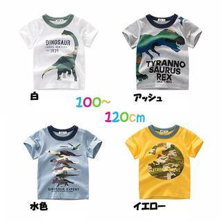 韓国 子供服 半袖 Tシャツ 100 110 120 男の子 恐竜いろいろ(Tシャツ/カットソー)