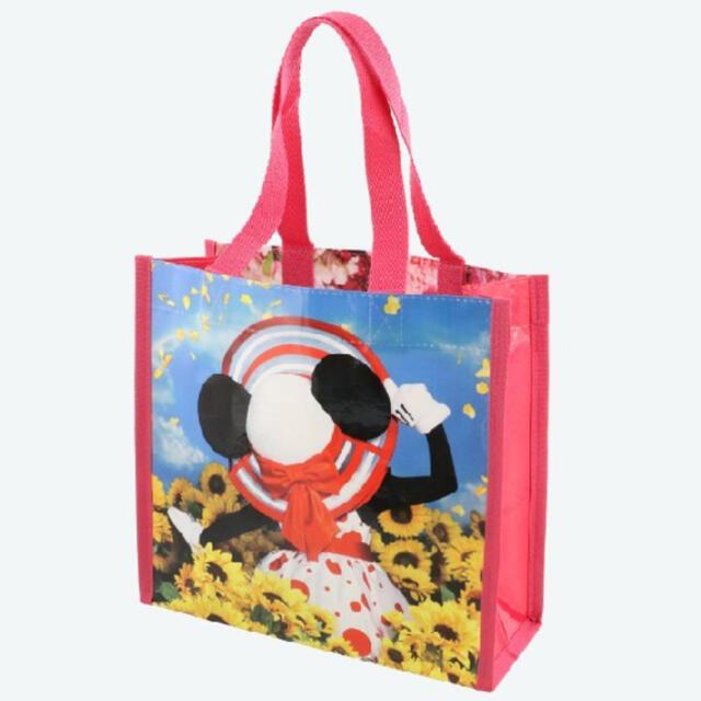 Disney(ディズニー)のイマジニングザマジック バッグ 写真集なし エンタメ/ホビーのおもちゃ/ぬいぐるみ(キャラクターグッズ)の商品写真