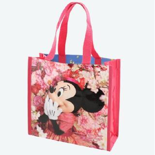 Disney - イマジニングザマジック バッグ 写真集なし