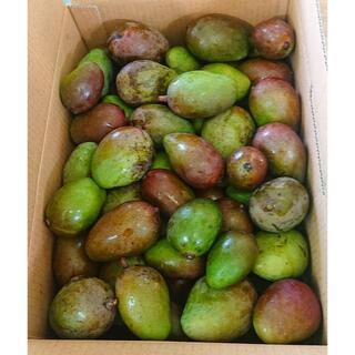 限定特価!沖縄産マンゴー【 10kg !】 サラダやピクルスに!(野菜)