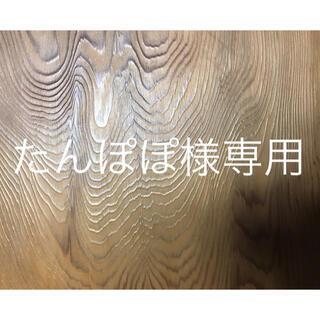 たんぽぽ様専用(野菜)