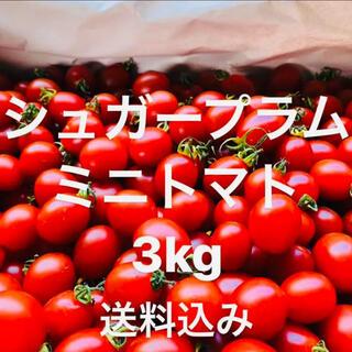 ミニトマト 超濃度‼️  送料込み★(野菜)